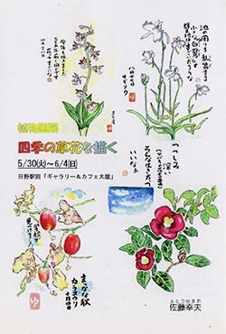 植物画展 四季の草花を描く …佐藤 幸夫